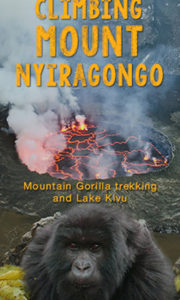 Special Gorilla Expeditions