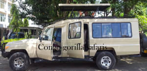 Safari jeep for Wildlife game drive