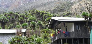 Bujuku Hut on Mountain rwenzori