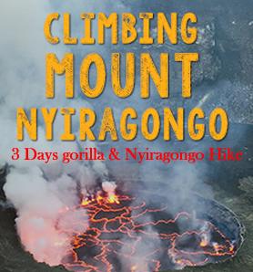 Rwanda Gorilla Trekking & Nyiragongo Hike