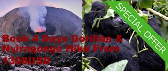 Gorilla trekking & Climbing nyiragongo